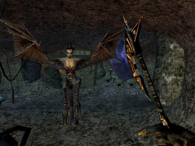 Morrowind Screenshot creature-3