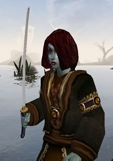 Morrowind Screenshot person-3