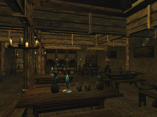 Morrowind Screenshot town-2